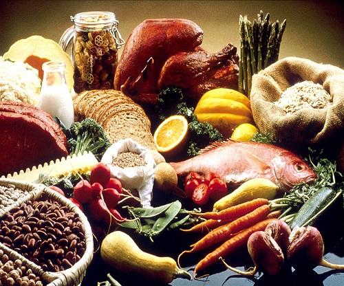 Food 500 x 416l